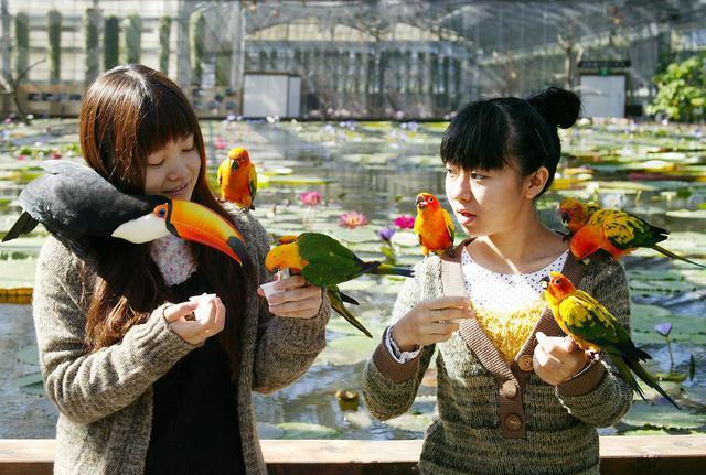 静岡県のお出かけ ...